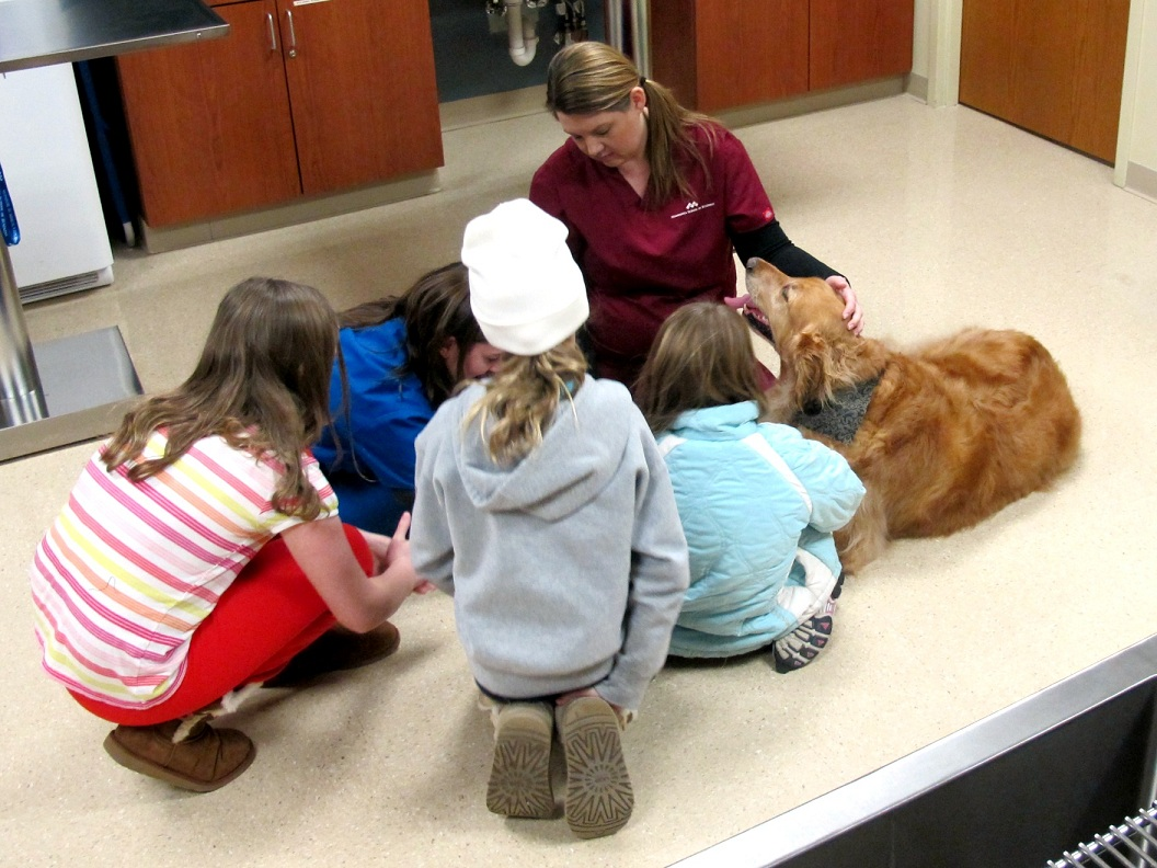 Vet tech program