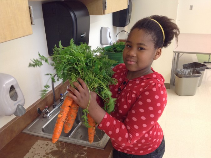 Student at CHCCS taking part in an activity, holding carrots