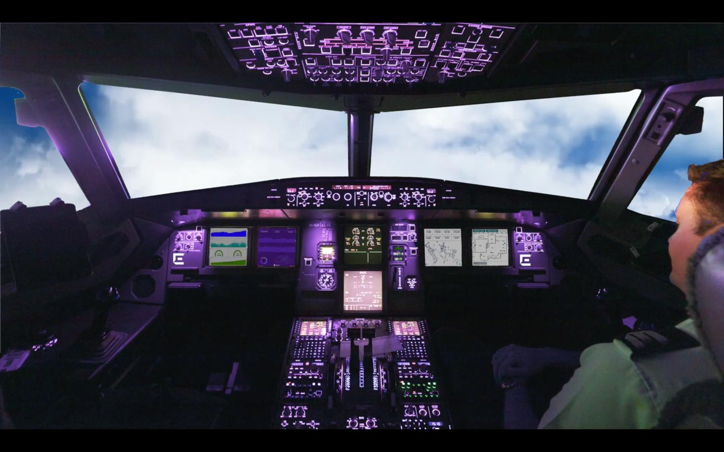 plane controls with pilot copilot
