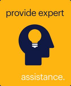 provide-expert-assistance