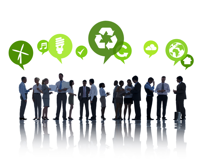 importance of sustainability in organizations Strategies to improve organizational capacity  in reality, program and  organizational sustainability  concerns about sustainability are important,  however.