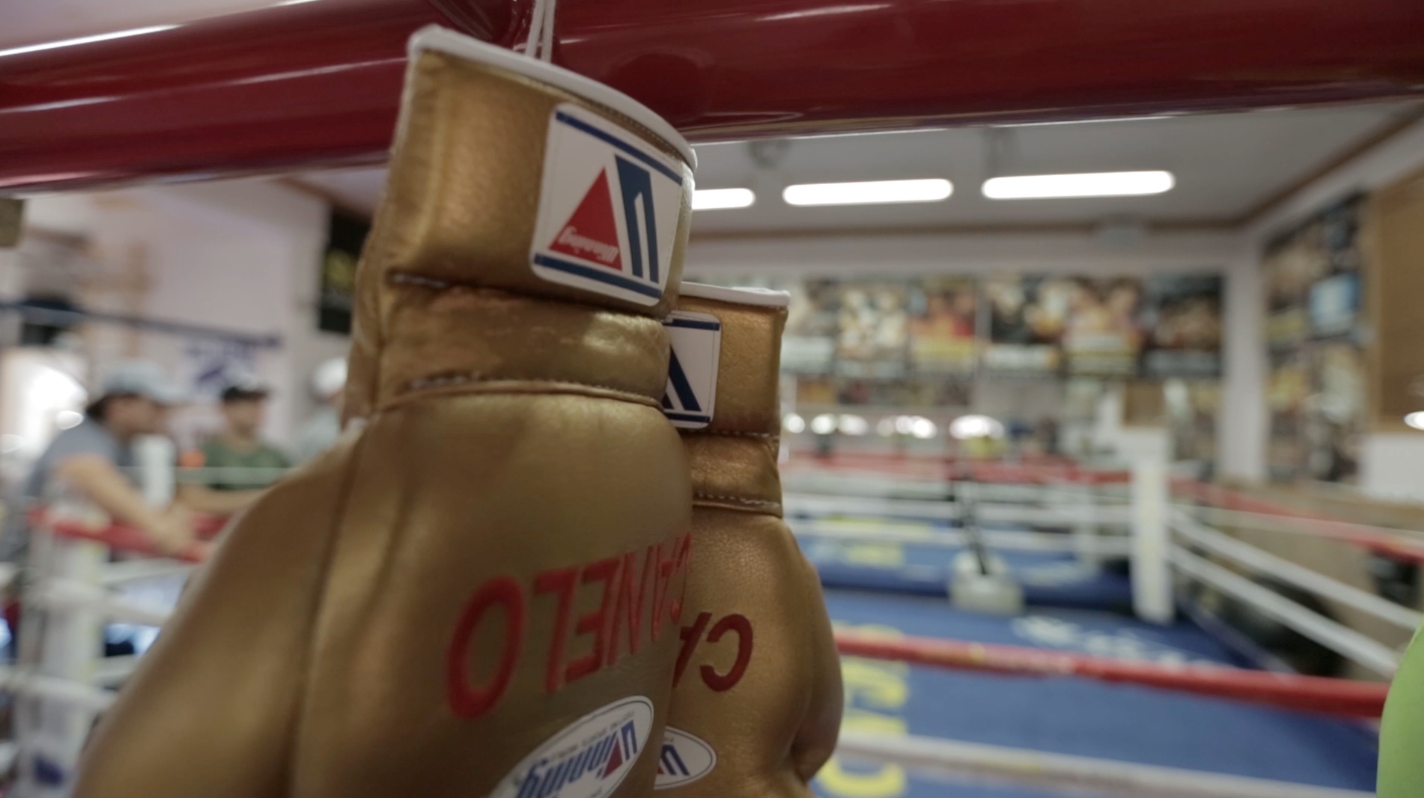 Canelo Gloves 5 Things You Didnt Know About Saul Canelo Alvarez