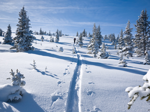 snowy vail Americas Best Places For A White Christmas